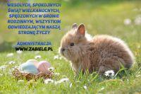 Czytaj więcej: Wesołych Świąt Wielkanocnych!
